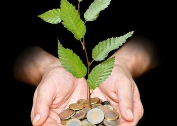6012679 - hand with tree growing from pile of coins